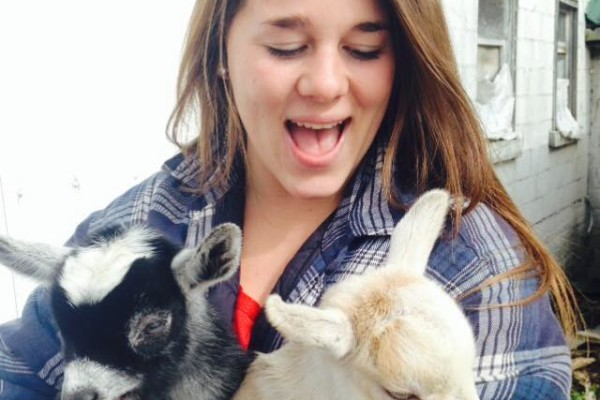 baby goats oct 2014